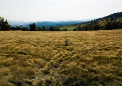 5 zdjecia slubne w gorach sesja z dronem leszno